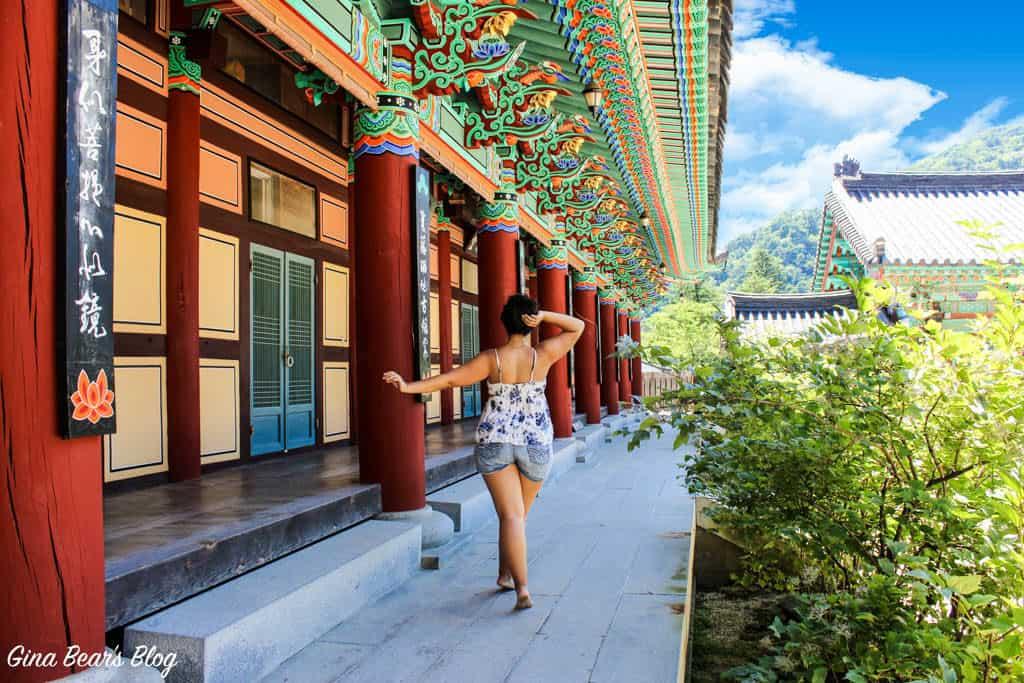 Why I Prefer Living in Korea over Japan - Gina Bear's Blog